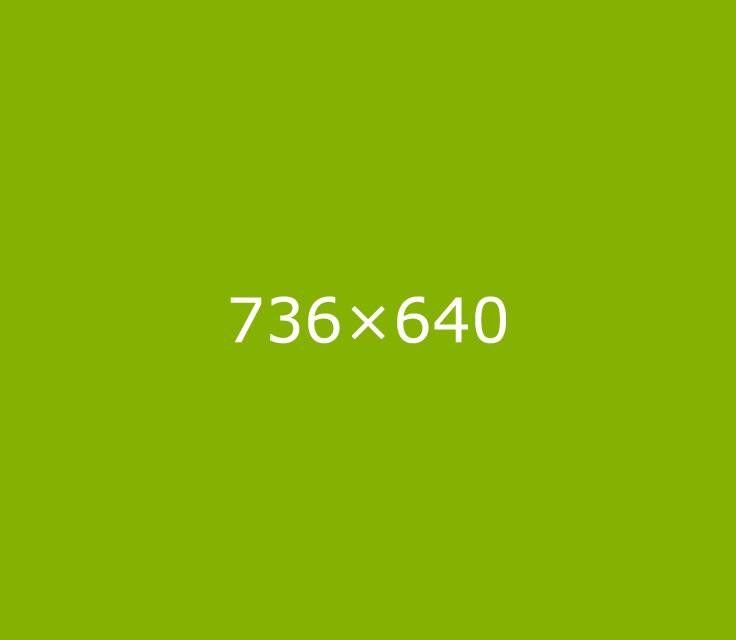 736x640